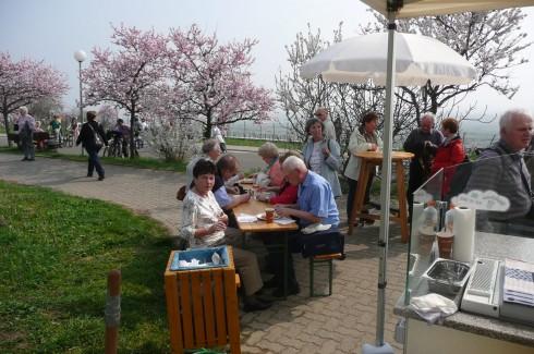 Hotels Near Badepark Hassloch in Wörth Am Rhein: TripHobo