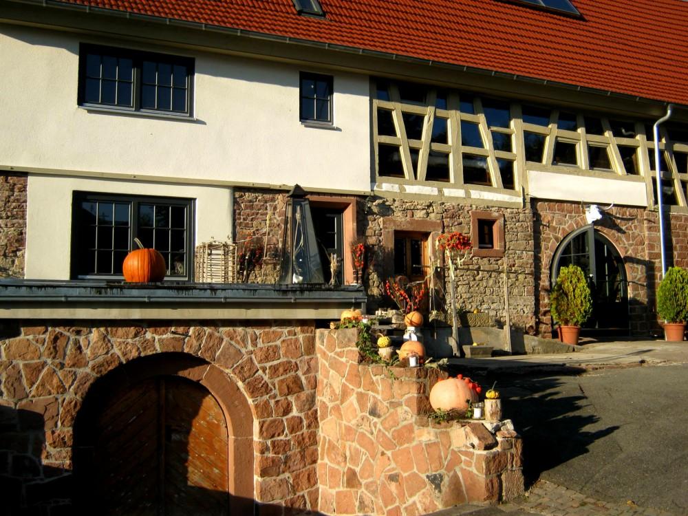 7406-Restaurant-OX-ScheuneZum-Ochsen-Mos