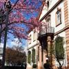Restaurant Villa Merton in Frankfurt am Main (Hessen / Frankfurt am Main)]