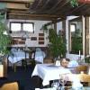 Restaurant Weinstube zum Pfauen in Heidenheim an der Brenz (Baden-Württemberg / Heidenheim)]