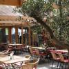 Restaurant Augustiner im Bankepeter in Freiburg im Breisgau (Baden-Württemberg / Freiburg)