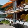 Albtalblick Hotel - Restaurant in Häusern (Baden-Württemberg / Waldshut)]