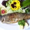 Aquamarin Fischrestaurant in Chorin OT Serwest (Brandenburg / Barnim)]