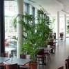 Restaurant Porto in Berlin