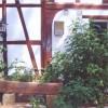 Restaurant Zur Sonne in Burghaun (Hessen / Fulda)