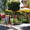 Rösti Restaurant Tannenzäpfle im Wellnesshotel Auerhahn in Schluchsee-Aha (Baden-Württemberg / Breisgau-Hochschwarzwald)]