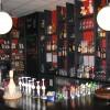 Restaurant Paulaner Wirtshaus in Steinheim (Nordrhein-Westfalen / Höxter)