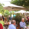 Hotel Restaurant Zum Grünen Baum in Michelstadt