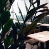 Restaurant xfresh - coffee & foodlounge in Dresden (Sachsen / Dresden)]