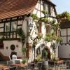 Restaurant Muskatellerhof in Gleiszellen in der Pfalz (Rheinland-Pfalz / Südliche Weinstraße)]