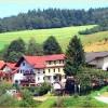 Restaurant Zur Krone in Beerfelden/Gammelsbach (Hessen / Odenwaldkreis)]