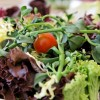Restaurant cadadia - Feine Suppen & Catering in Berlin (Berlin / Berlin)]