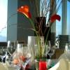 SCALA - Turm Hotel Restaurant in Jena (Thüringen / Jena)]