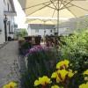 Restaurant-Gasthaus Eifelstube in Rodder (Rheinland-Pfalz / Ahrweiler)]
