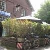 Restaurant Il Ristorante & Pizzerria Horstm�hle 1 in Horst (Schleswig-Holstein / Steinburg)]