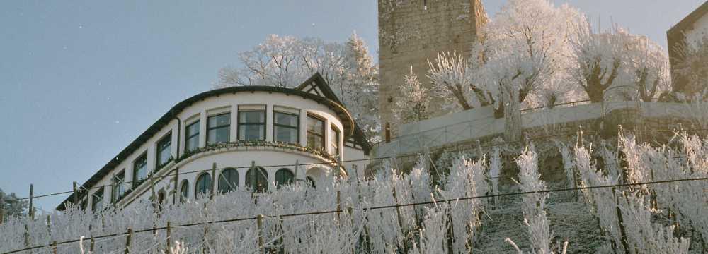 Burg Windeck Hotel- und Restaurant in Bühl