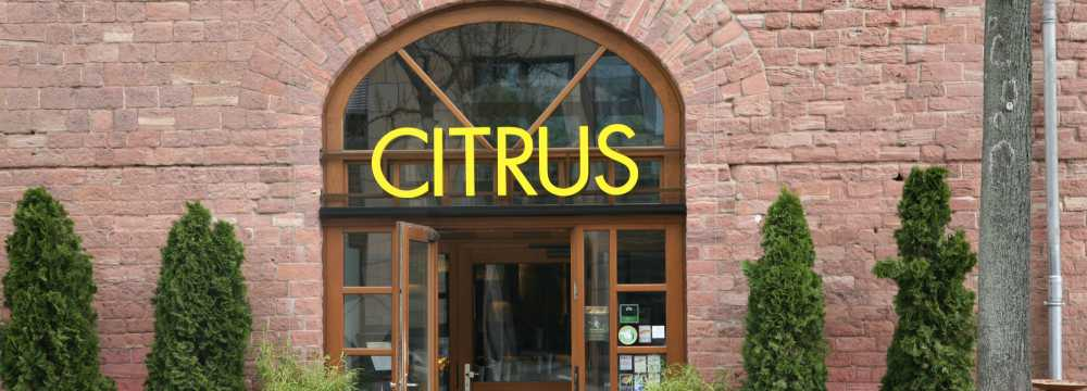 Citrus Bar & Restaurant in Mainz