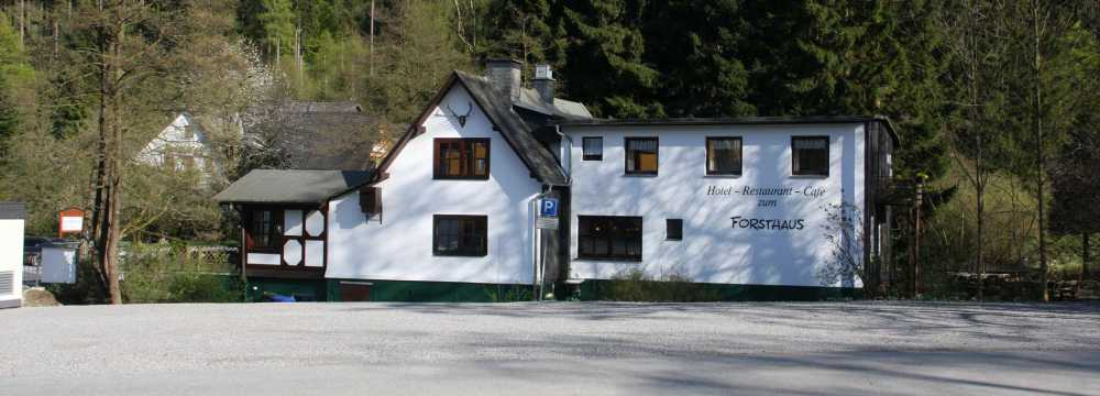 Forsthaus in Willingen (Upland)
