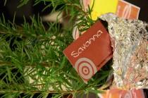 Logo von Bar-Restaurant Savanna  in Nürnberg