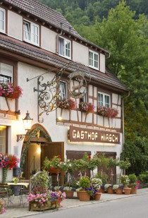Logo von Gasthof-Restaurant Hirsch in Bad Ditzenbach